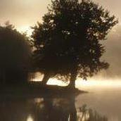 L'Hirondelle du Lac Chambres D'Hotes