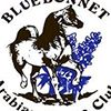 Bluebonnet Arabian Horse Club