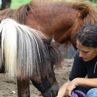 Heartfelt Horsemanship Australia