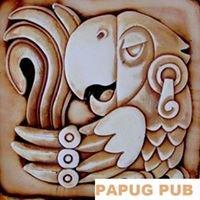 PAPUG PUB