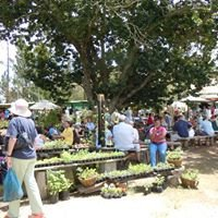 Harkerville Saturday Village Market