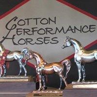 Cotton Performance Horses