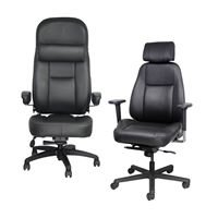 Ergonomic Office Chairs Co.