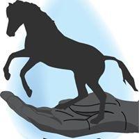 Treadway Equine Animal Rescue Sanctuary  AKA TEARS