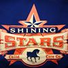 Shining Stars Percherons thumb