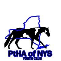 Pinto Horse Association of NYS Youth Club