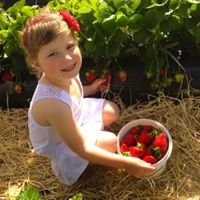 Somerfields Berryfruit Farm