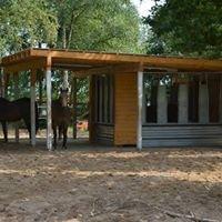 Peer-Hoff e.V. - Pferde natürlich halten