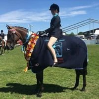 South Island Premier Championship Show