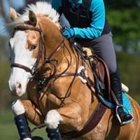 Pletch Eventing and Saddle Fitting