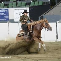 Double Diamond Western Performance Horses