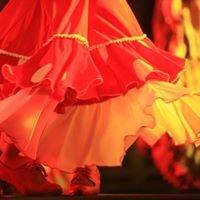 AlquimiaFlamenca Compañía de música y baile Corsi flamenco Bologna