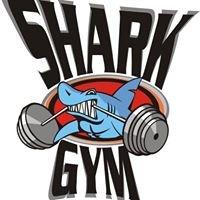 SHARK GYM