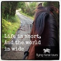 Flying Horse Tours