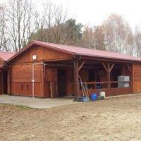 Stajnia Rudka - sanatorium dla koni