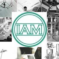 IAM consultants
