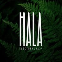 HALA electoralna 24