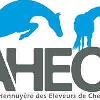Ahecs - Association Hennuyère des Eleveurs de Chevaux de Sport