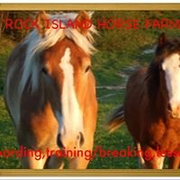 Rock Island Horses