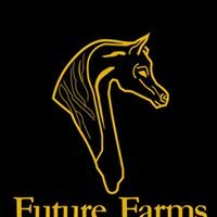 Future Farms Arabians