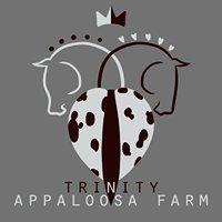 Trinity Appaloosa Farm
