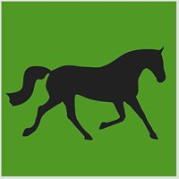 International Equestrian Services Ltd