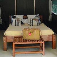 Ol-moran Tented Camp - Masai mara
