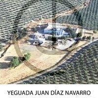 Yeguada Juan Díaz Navarro (cortijo Ardón)