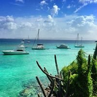 America's Caribbean Realty