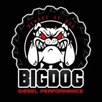 Big Dog Performance