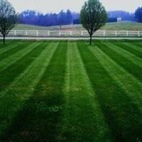 Lawns of Montana