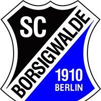 SC Borsigwalde 1910 e.V. - Herrenabteilung