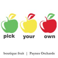 Paynes Orchards