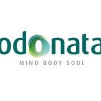 Odonata - Mind Body Soul