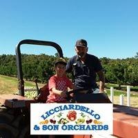 Licciardello and Son Orchard Home of Crazy4Fruit & Veg