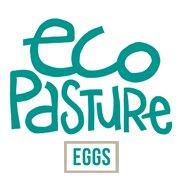 Eco Pasture Eggs