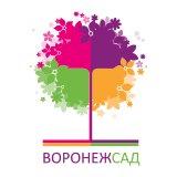 Воронеж Город Сад