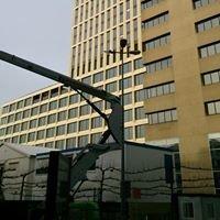 NautaDutilh, Rotterdam