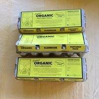 """Glenrose Eggs """"Glenrose Family Farm"""""""