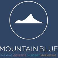 Mountain Blue Farms