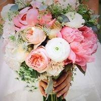 Jetty flowers