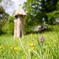 The Meadow - Dartington Pollinator Sanctuary