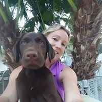 Dogsmith Palm Beach County