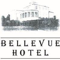 Bellevue Hotel Charzykowy