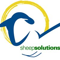 Sheep Solutions