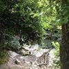 Jezreel Valley B&B- Numa Emek