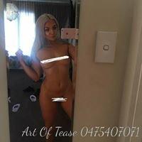 Art Of Tease Girls