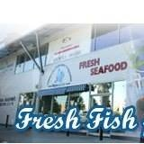 Commercial Fishermen's Co-operative
