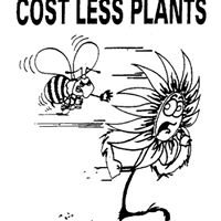 Cost Less Plants, Yatala Vale