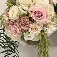 Pure Flower Designs